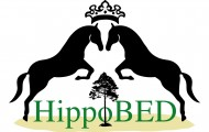 Logo Hippobed